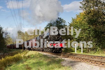 LPISD-STM-CO-0007 
