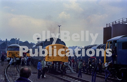 LPAP-DSL-CO-0033 